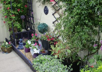 Ms Bamford - Best Garden of a Flat (3)
